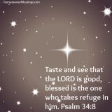 Taste/See
