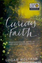 Curious Faith Book Review