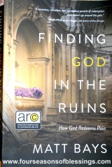 Finding God in the Ruins BookReview